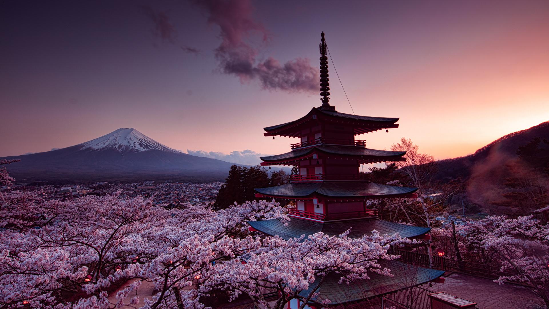 Japon, Asia, viajes de aventura, viajes alternativos, turismo responsable, viajes en grupo, viajar en grupo, viajar sola, viajar solo