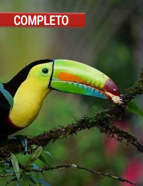 Costa-Rica-Viaje-de-Aventura-viaje-alternativo-en-grupo COMPLETO