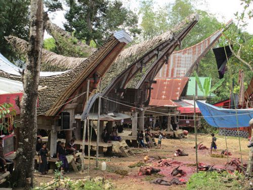 Indonesia2-3000kmViajes-Aventura-Alternativos-Mochilero-Turismo_Responsable