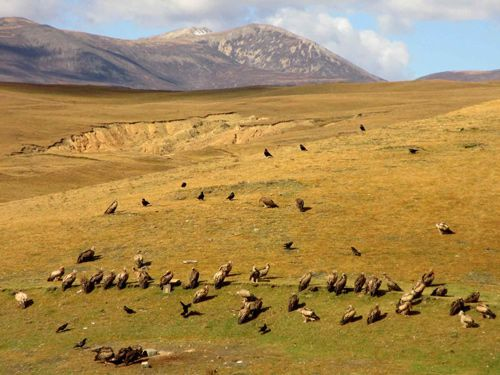 Litang--China-Tibet-3000KM-Viajes-Aventura-Alternativos-Mochilero-Turismo_Responsable