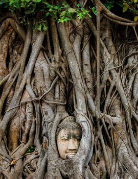 Tailandia Asia h -Viajes-de-Aventura-Viajes-Alternativos-Turismo_Responsable-Mochilero-Viajar_en_Grupo-Viajar_Solo-3000KM 1