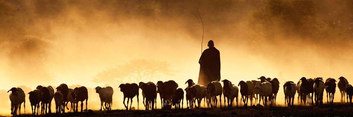 Tanzania, Africa , Viajes de Aventura, Viajes Alternativos, Turismo Responsable, Mochilero, Viajar en Grupo, Viajar Sola, viaje en grupo,