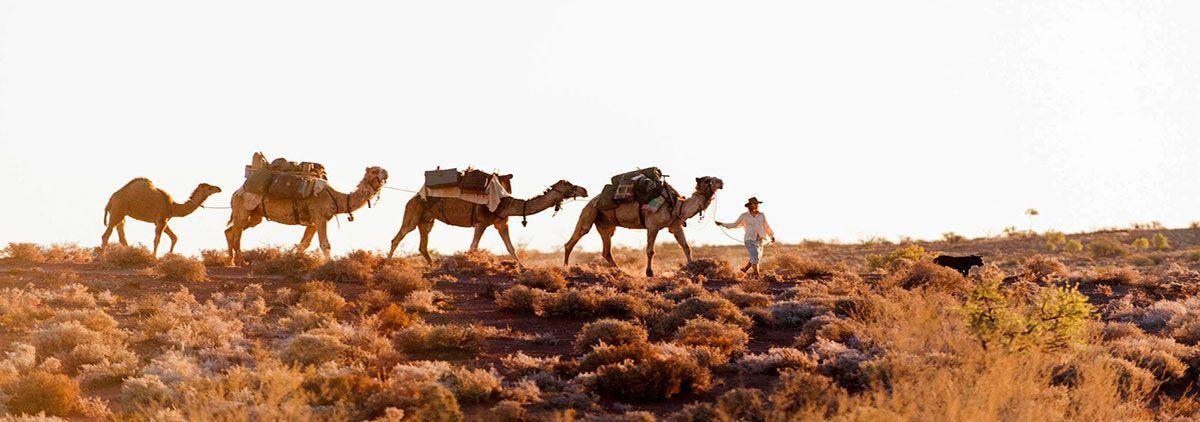 Desierto y camellos: Viajes de Aventura, Viajes Alternativos, Turismo Responsable, Mochilero, Viajar en Grupo, Viajar Sola. 3000KM